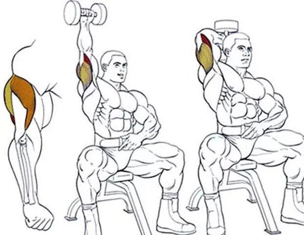 силовые тренировки дома