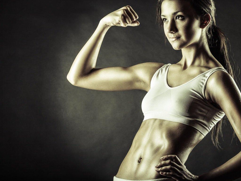 купить программу силовых тренировок